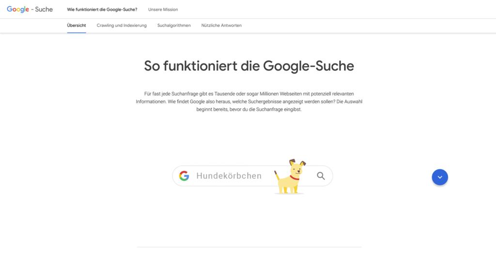 Cover Google-Suche Information